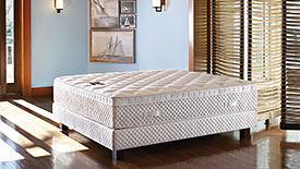 Royalty Bed Mattress